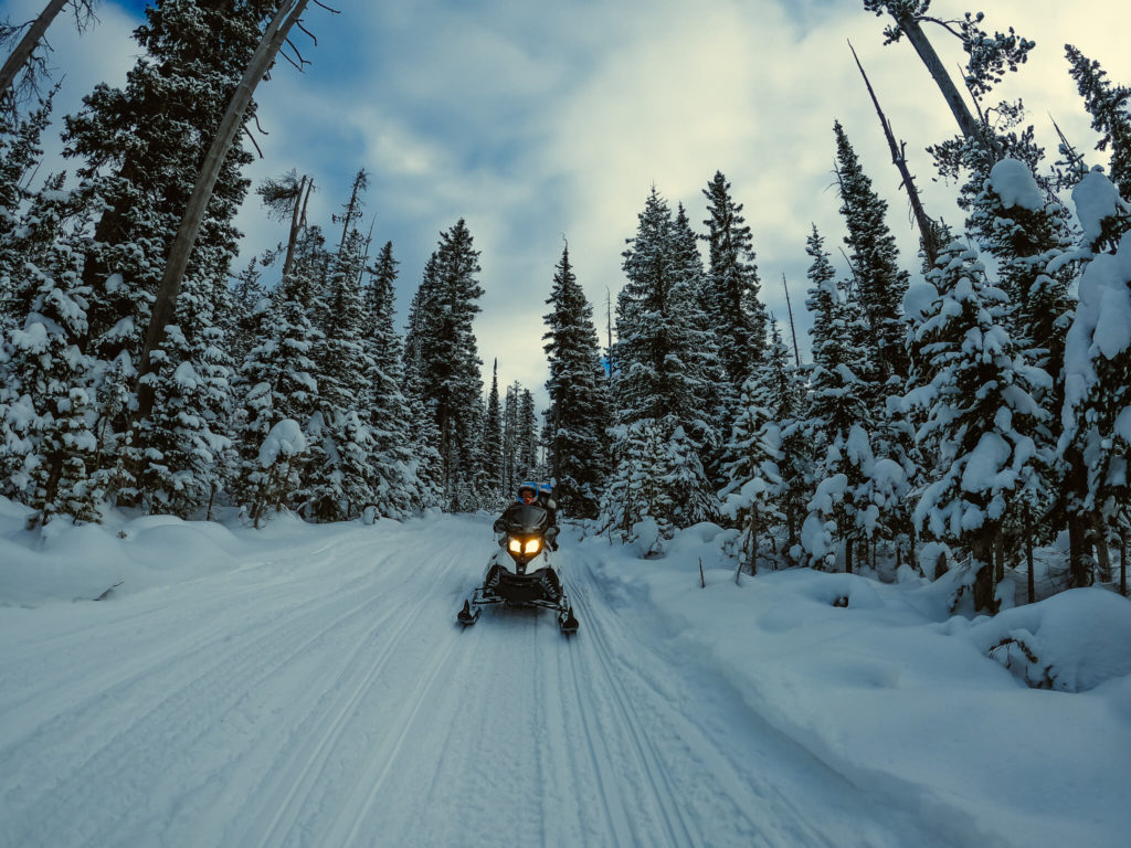 snowmobiling in West Yellowstone